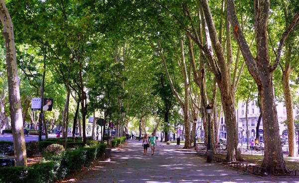 Paseo del Prado Gardens