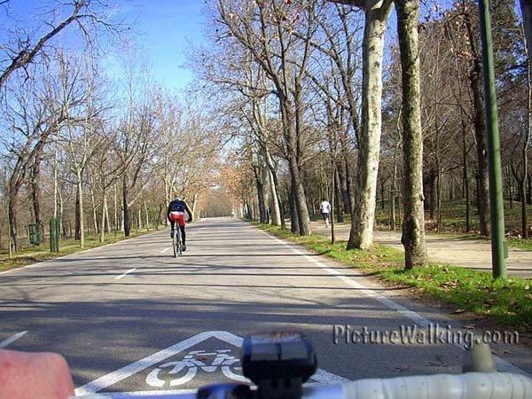 En bicicleta por la Casa de Campo de Madrid
