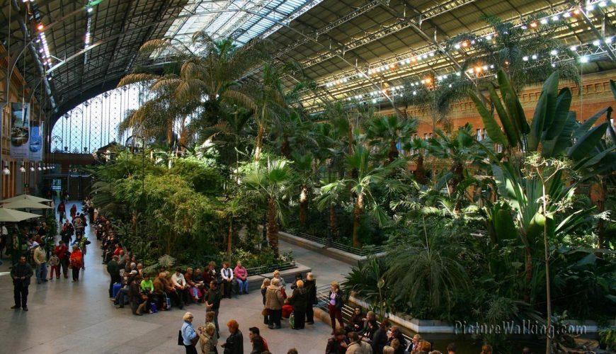 Invernadero y Jardín Botánico de Atocha