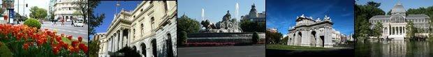 Walking Tour Madrid 4
