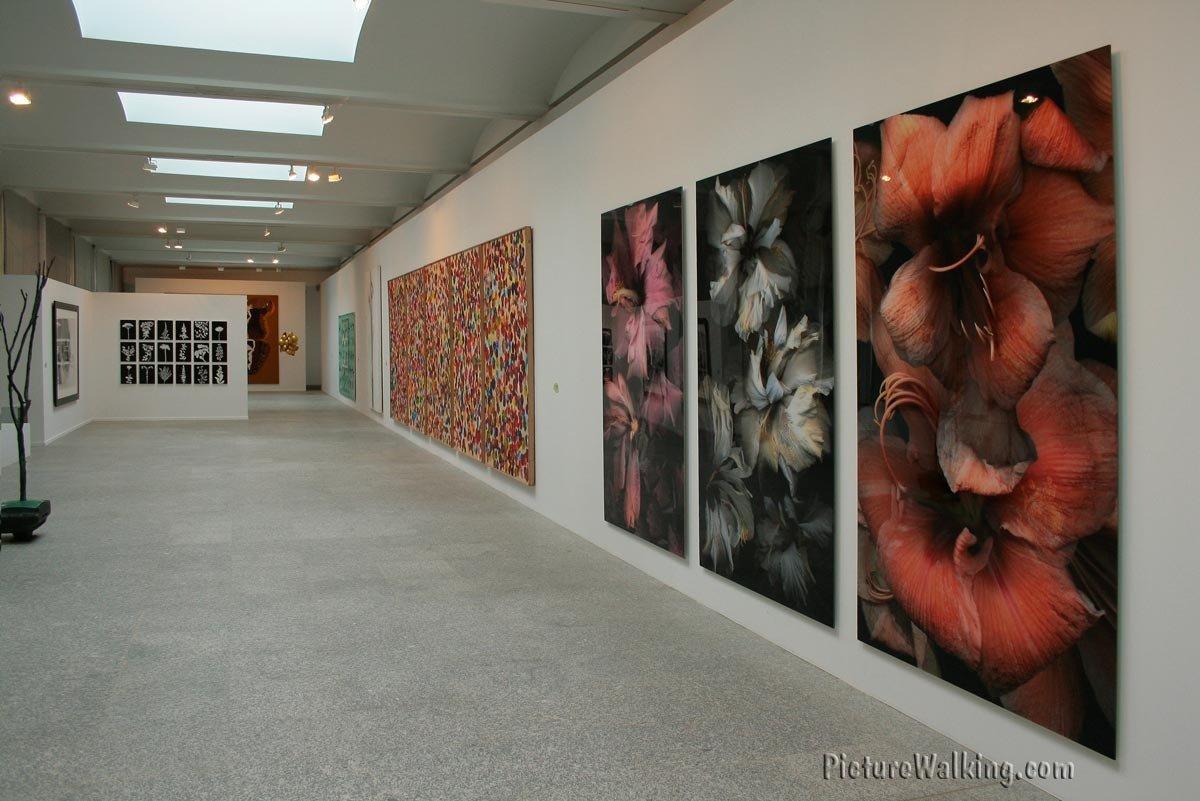 Colección de Arte Contemporáneo en el Jardín Botánico